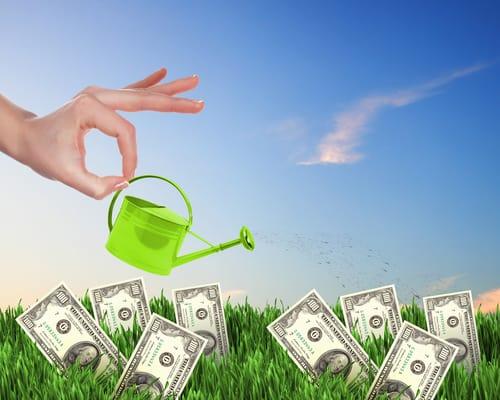 Save Money on Gardening
